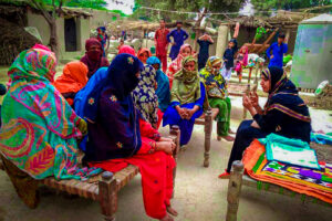 Sexual Reproductive Health and MNCH Project (Maltster int)